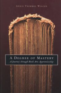 A-Degree-of-Mastery-Annie-Tremmel-Wilcox-Cover