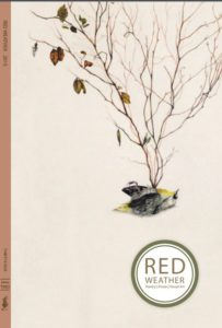 Red-Weather-Thirty-Four-Edition-Two-Cover